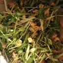 水菜とツナのカリカリサラダ