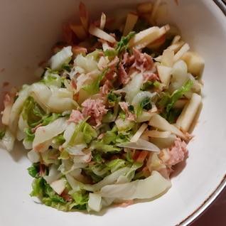 ツナとリンゴ、白菜サラダ