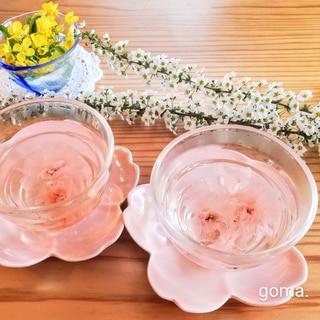 春爛漫・桜茶 ♬*゜