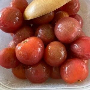 ミニトマトのはちみつレモンマリネ