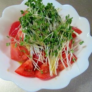 栄養タップリ♪トマトとブロッコリースプラウトサラダ