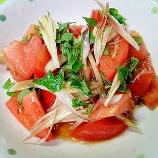 トマトとみょうが大葉の中華和え