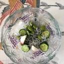枝豆、胡瓜、ラディッシュ、しらすの和え物