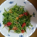豆苗とトマトで簡単温野菜サラダ
