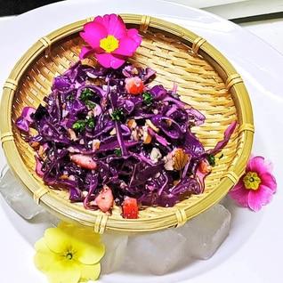 紫キャベツマリネでお弁当、作り置き、大量消費に✨