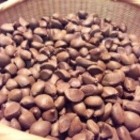椿油 作り方