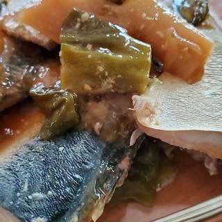 圧力鍋でサバの味噌煮