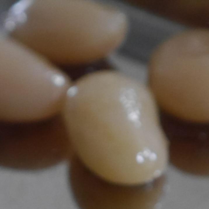豆屋おすすめ!白花豆煮(甘煮)
