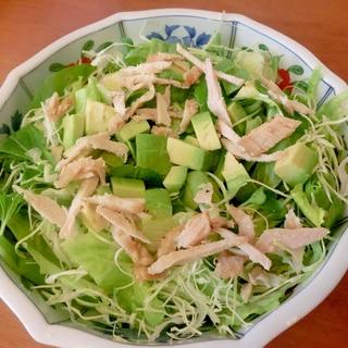 野菜たっぷり グリーンサラダ☆