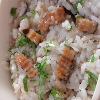 簡単!刻み穴子と大葉の混ぜご飯