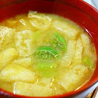 蕗とこごみの味噌汁