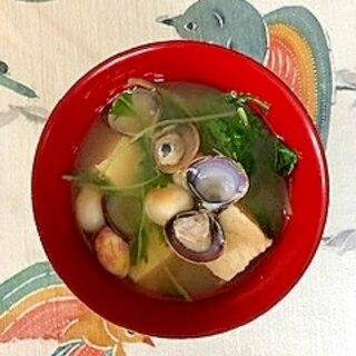 水菜、木綿豆腐、しじみ、豆麩のお味噌汁