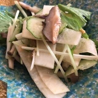 きのこ♡大根*水菜*きゅうりサラダ