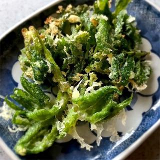 うどの葉の天ぷら*春の味♪一品*おつまみ♪