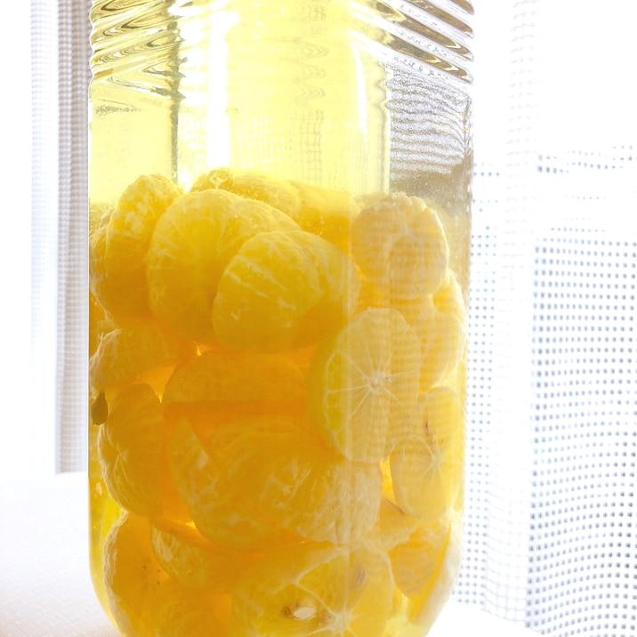 柑橘系の果実酒♪湘南ゴールドの原種★黄金柑★