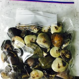 いつでも美味しく!蛤の保存方法