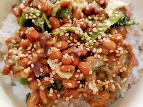 納豆の食べ方-酒粕&ごましば高菜♪