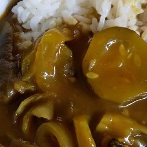 おばけきゅうりと茄子カレー