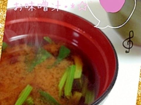 シャキッと美味しい♡ほうれん草のお味噌汁