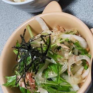 新玉ねぎの中華風サラダ