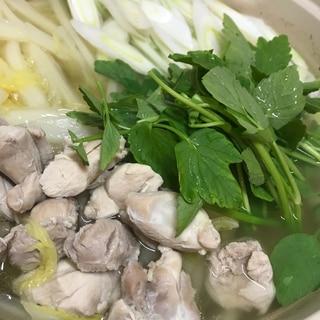 ホロっと柔らか♡セリと鶏のお鍋