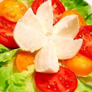【簡単贅沢サラダ】絶品ブッファラのトマトサラダ