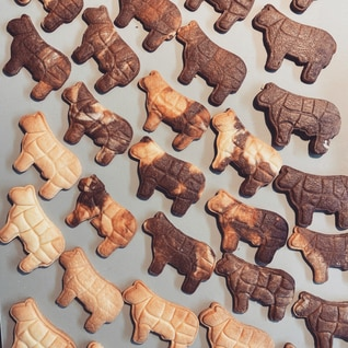 型抜きしやすいクッキー プレーンandココア