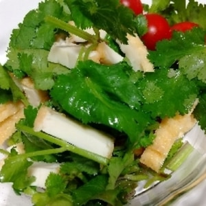 厚揚げとパクチーのサラダ