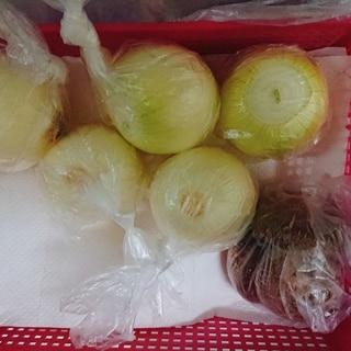 玉ねぎの便利な保存方法