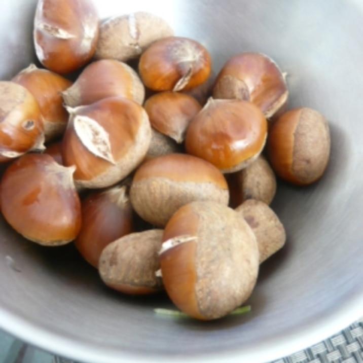 トースターで簡単焼き栗