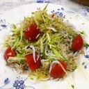 アルファルファしらすトマトの醤油レモンサラダ