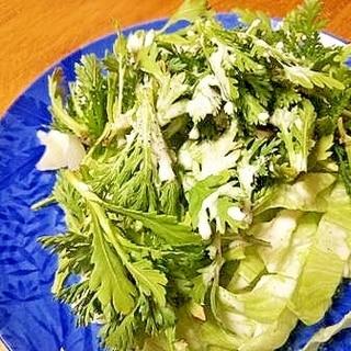 春菊を生で食べたいときのサラダ 手作りドレッシング