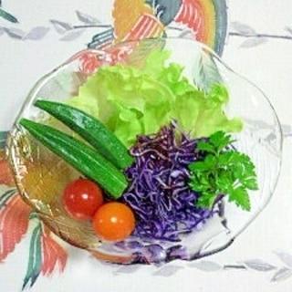レタスと紫キャベツのサラダ~♥
