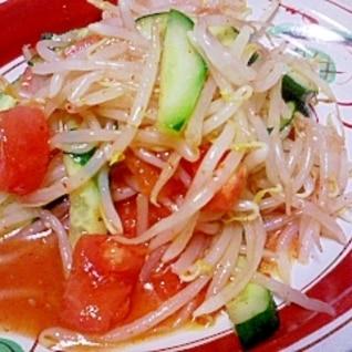 もやし・トマト・きゅうりでちょい辛冷製サラダ