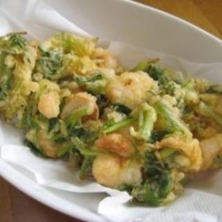 春の味♪ からし菜とプリプリ海老のかき揚げ♪