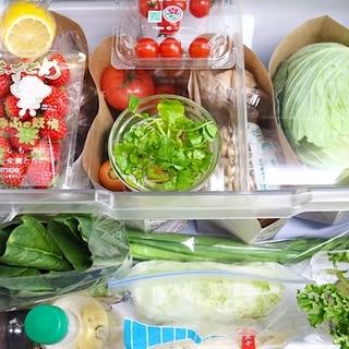 【賢く節約!】食費を減らす冷蔵庫の整理整頓術をプロの料理家が紹介!