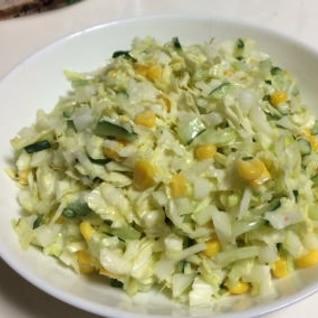 野菜たっぷり☆コールスローサラダ