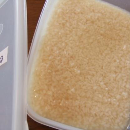 リピです♪ 大分のおいしい麹をお取り寄せしたので作ってみました! 香りが違います、おいしくできそうです♪