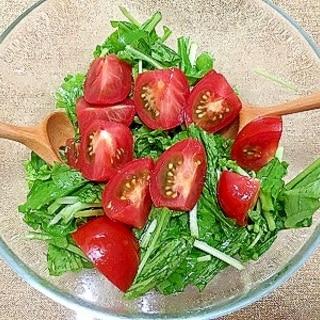 フランス人直伝★ルッコラとトマトのサラダ