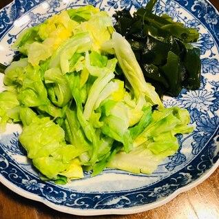 旬☆春キャベツと生わかめのボイル(ポン酢味)