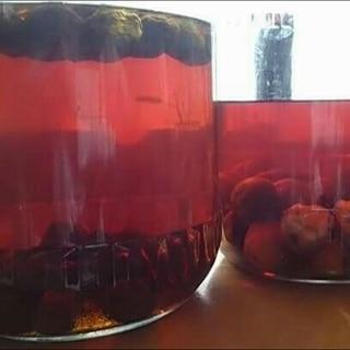 ブランデーで漬ける濃厚梅酒