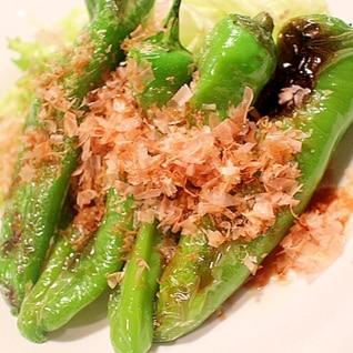 【麺つゆで簡単】焼き甘長とうがらしのお浸し風