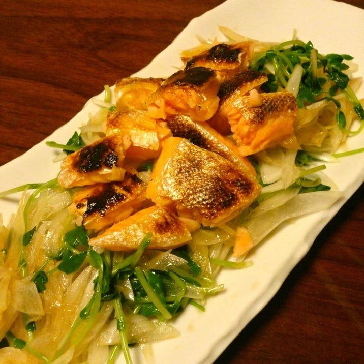 新たまねぎと鮭ハラスのサラダ