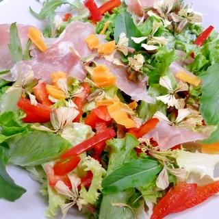 春から初夏へ移る季節のサラダ*生ハム・チーズ・野菜