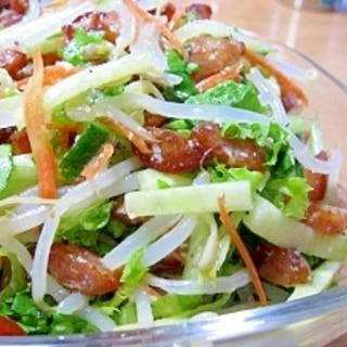 カリカリウインナーと塩麹で簡単☆タップリ野菜サラダ