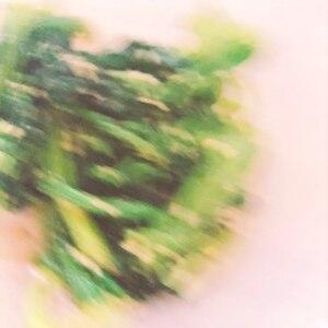 ほうれん草の胡麻和え