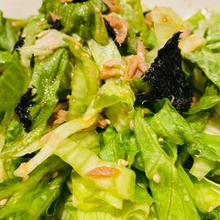 レタスとツナのうまうまサラダ