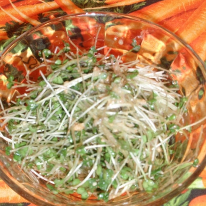 ブロッコリースプラウトの胡麻サラダ