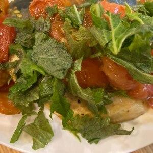 焼きサバに乗せる、簡単和風のトマトソース