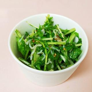 簡単☆大量消費☆水菜のマスタードサラダ